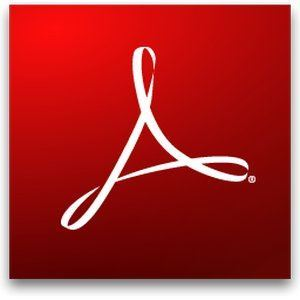 Adobe Acrobat Standard (Perpetual)