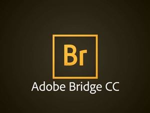 Adobe Bridge CC for Team