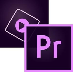 Adobe Premiere Elements ( Perpetual)
