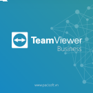 Teamviewer Subscription